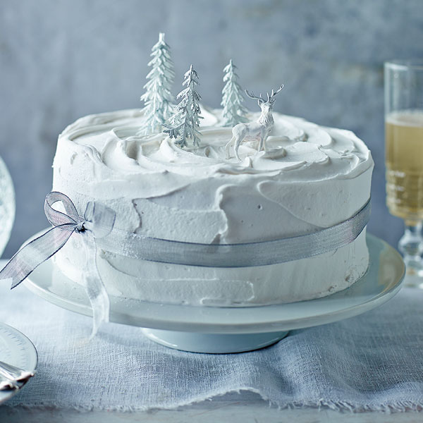 Christmas Cake Decorations.Recipes Mary Berry